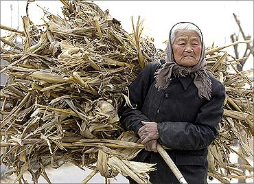 A woman carries a load of firewood to her home in the village of Da Shi Men.