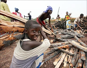 A boy gathers firewood