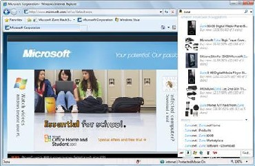 A screenshot of Internet Explorer 8