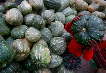 A girl carries a pumpkin at a wholesale vegetable market in Chandigarh.