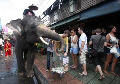 A mahout rides an elephant as they collect money for victims of the recent Japan earthquake in Bangkok.
