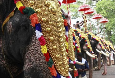 Caparisoned elephants participate in the Trichur Pooram festival at Trichur.