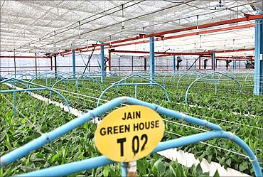 Hydroponics business plan template