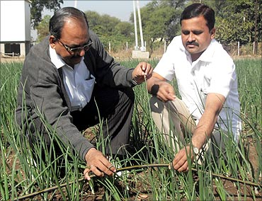 Hemchandra Patil in his farm, being guided by an agronomist.