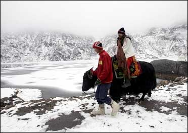A tourist rides on a yak after a heavy snowfall near the India-China trade route, north of Gangtok.