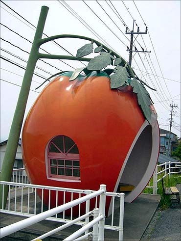 Tomato-shaped bus stop.
