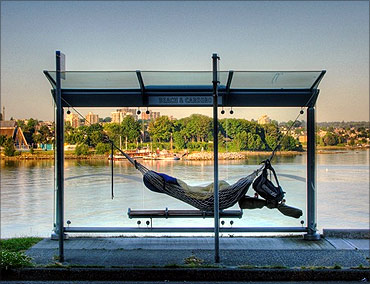 Bus stop with a hammock.