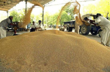 India's proposed Food Security Act is an important initiative.
