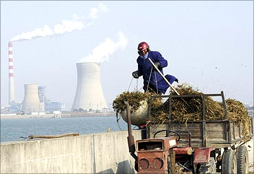 A worker collects dried grass near a power plant in Hefei, Anhui province.