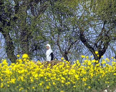 A girl walks along mustard fields in Jammu.