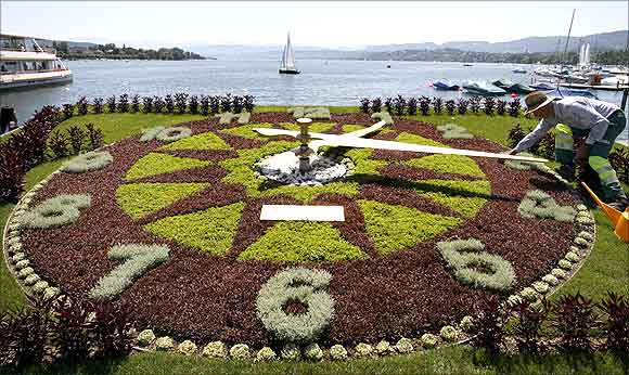A gardener prepares the dial made of plants, of a giant clock during sunny summer weather at the borders of Lake Zurich.