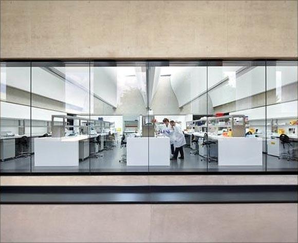 Sainsbury Laboratory.