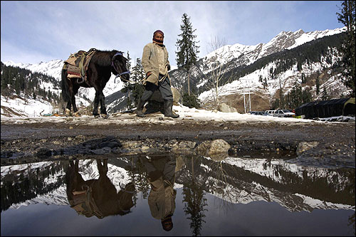 A man is reflected in a pool of melted snow as he walks with his pony in Solang Nallah, Manali.