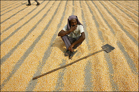 A labourer smokes while taking a break from spreading maize crop to dry.