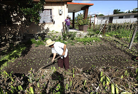 A man works in his yard in Sagua La Grande, east of Havana.