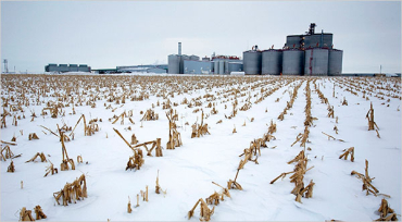 Nine plants produce 740 million gallons of the fuel annually.