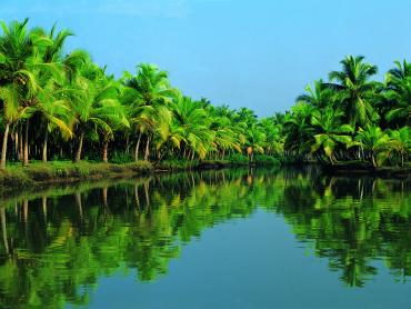 Kerala has 981 users per 1,000 population.