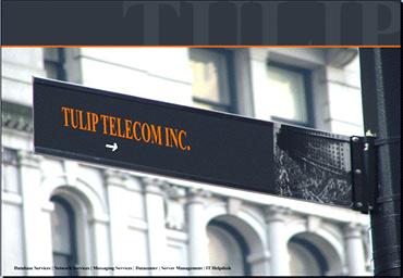 Tulip Telecom.