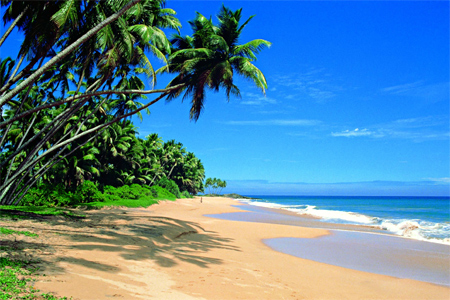A beach in Sri Lanka.