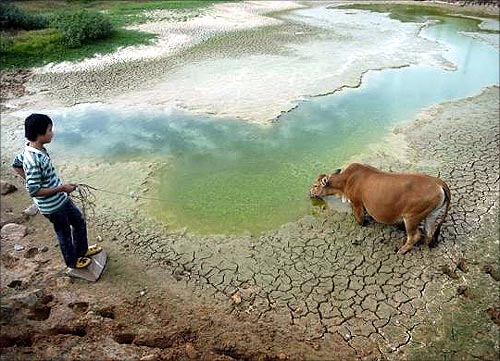 As water becomes scarce, droughts ravage the world