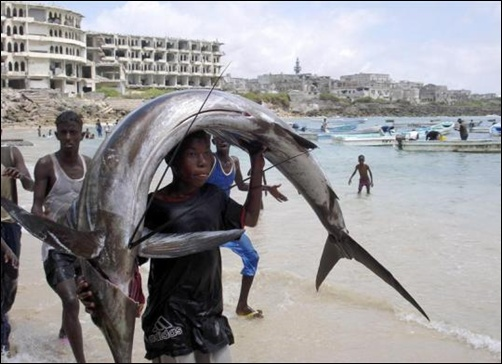 A Somalia young man carries a fish on his head near the shores of Indian ocean in Mogadishu.