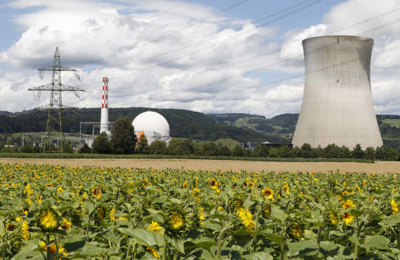 Sunflowers grow on a field in front of the nuclear power plant near the northern Swiss town Leibstadt.