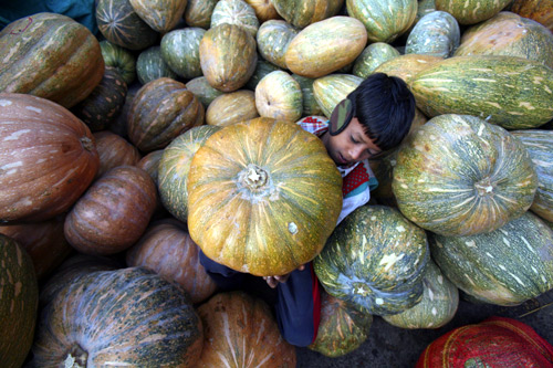 A boy carries a pumpkin at a wholesale vegetable market in Chandigarh.