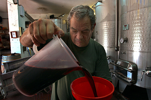 This is how wine is made