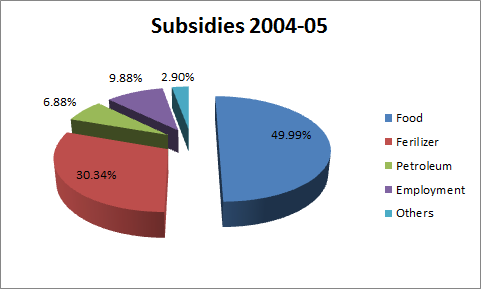 petrol subsidies 2004 2005