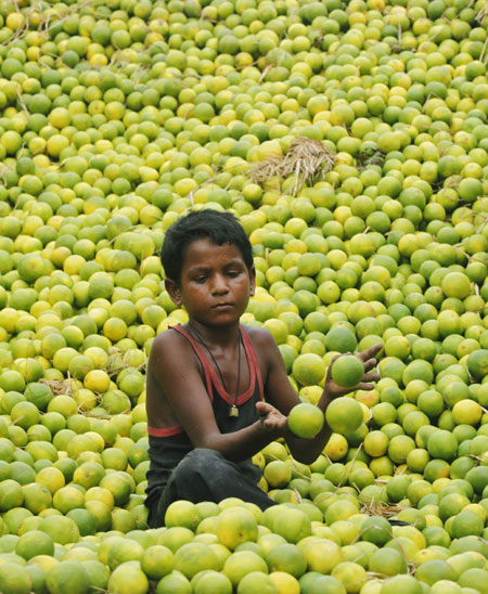 Twelve-year-old Chatu collects lemons at a wholesale fruit market in Kolkata.