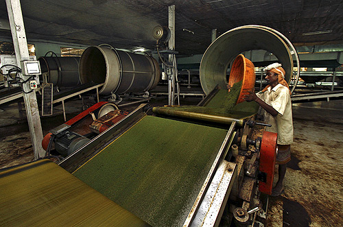An employee works inside a tea producing factory at the Amchong tea estate in Assam.
