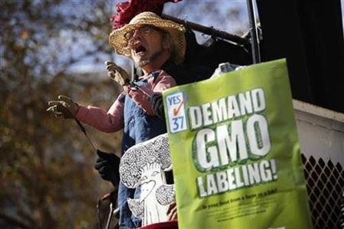 Activists demanding labelling of GM crops