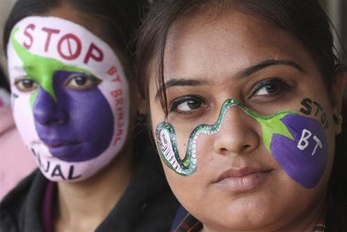 Students protesting against Bt brinjal in Chandigarh.