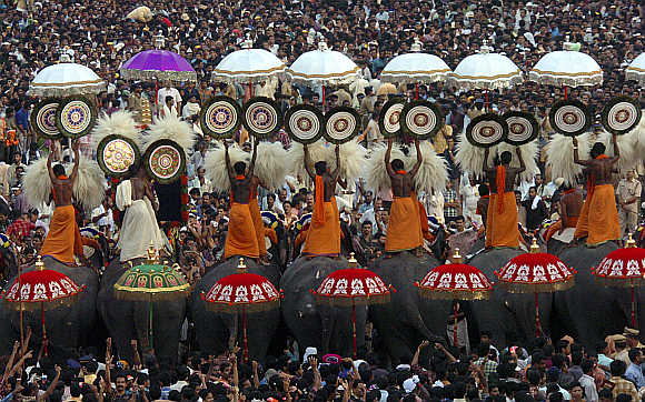 A procession of decorated elephants during the Pooram festival in Trichur, Kerala