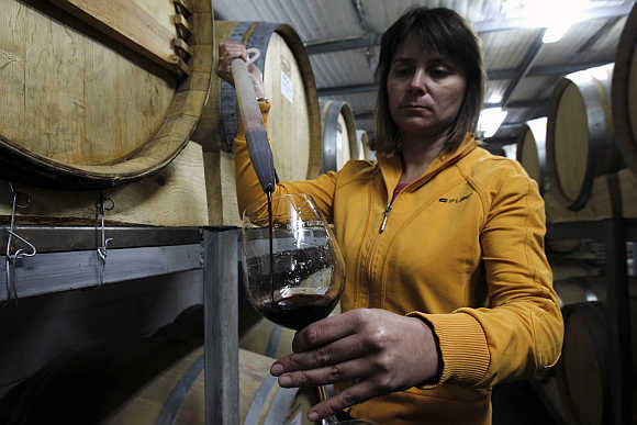 Iva, a wine expert from Bulgaria, checks wine in a cellar at Zumot winery in the outskirts of Amman, Jordan.