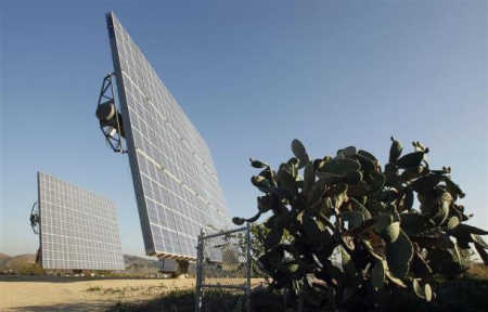 Amonix's CPV solar panel cells are seen next to cactus.