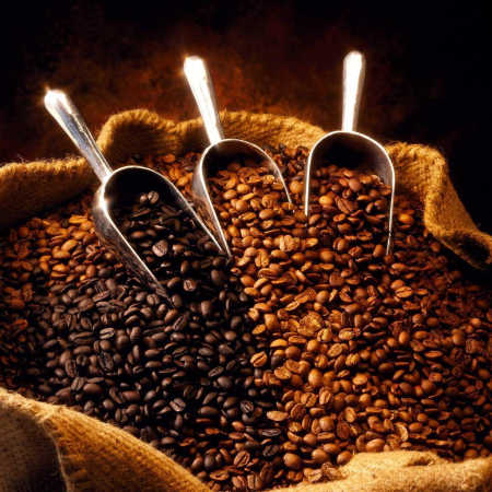 Starbucks plans to source Arabica coffee.