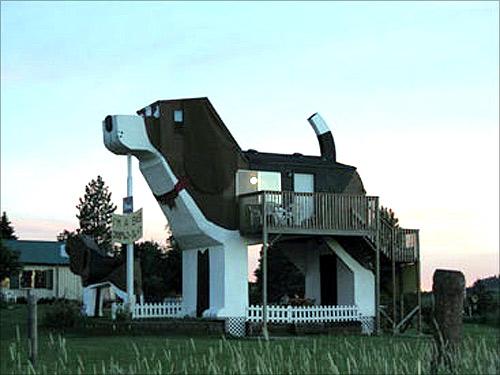 Dog Park Bark Inn.