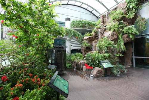 Title:Fantasy Land: Stunning images of Changi Airport in Singapore