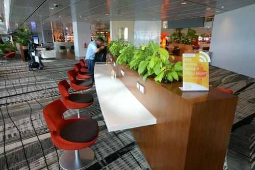 Fantasy Land: Stunning images of Changi Airport in Singapore
