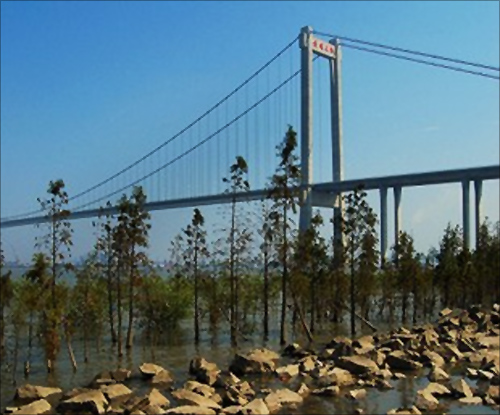 Huangpu Bridge.