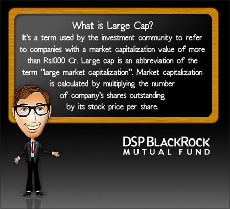 DSP BlackRock Mutual Fund.