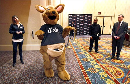 A kangaroo character poses at the Dish news conference.