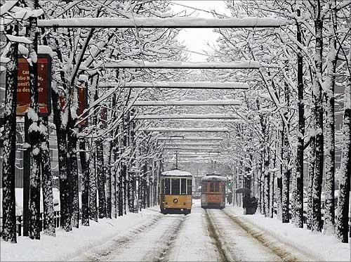 Trams in Milan.