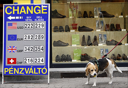 A dog passes a currency exchange rate chart at a money changer in Budapest.