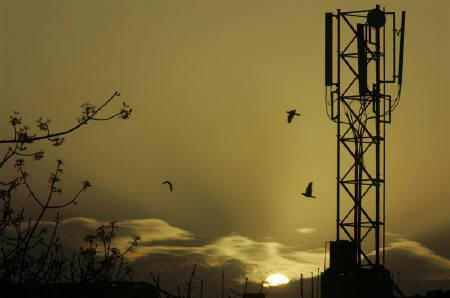 Govt gets only Rs 1,707 cr from 2G spectrum auction