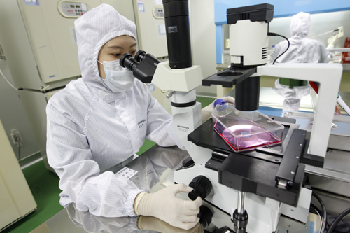 A researcher uses a microscope during a photo call at an aseptic room of the FCB-Pharmicell laboratory in Seongnam, near Seoul.