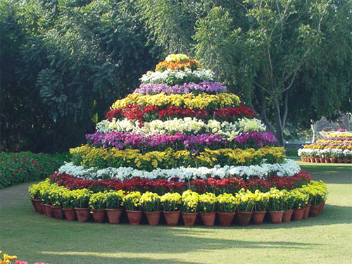 A garden in Chandigarh.