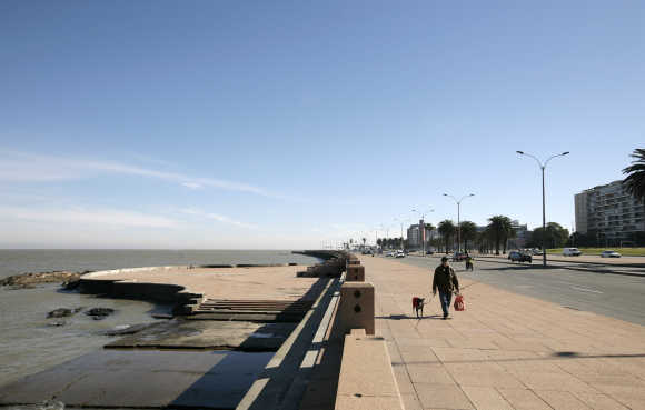 A resident walks his dog by the waterfront on a sunny winter day in Montevideo.