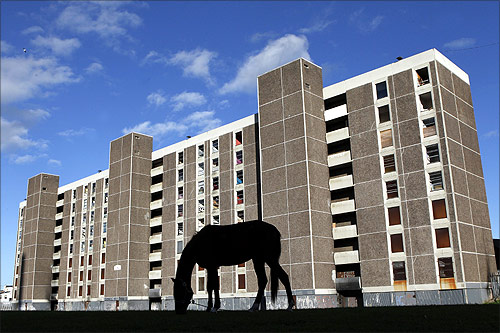 A horse grazes in front of derelict flats in the Ballymun area of North Dublin.